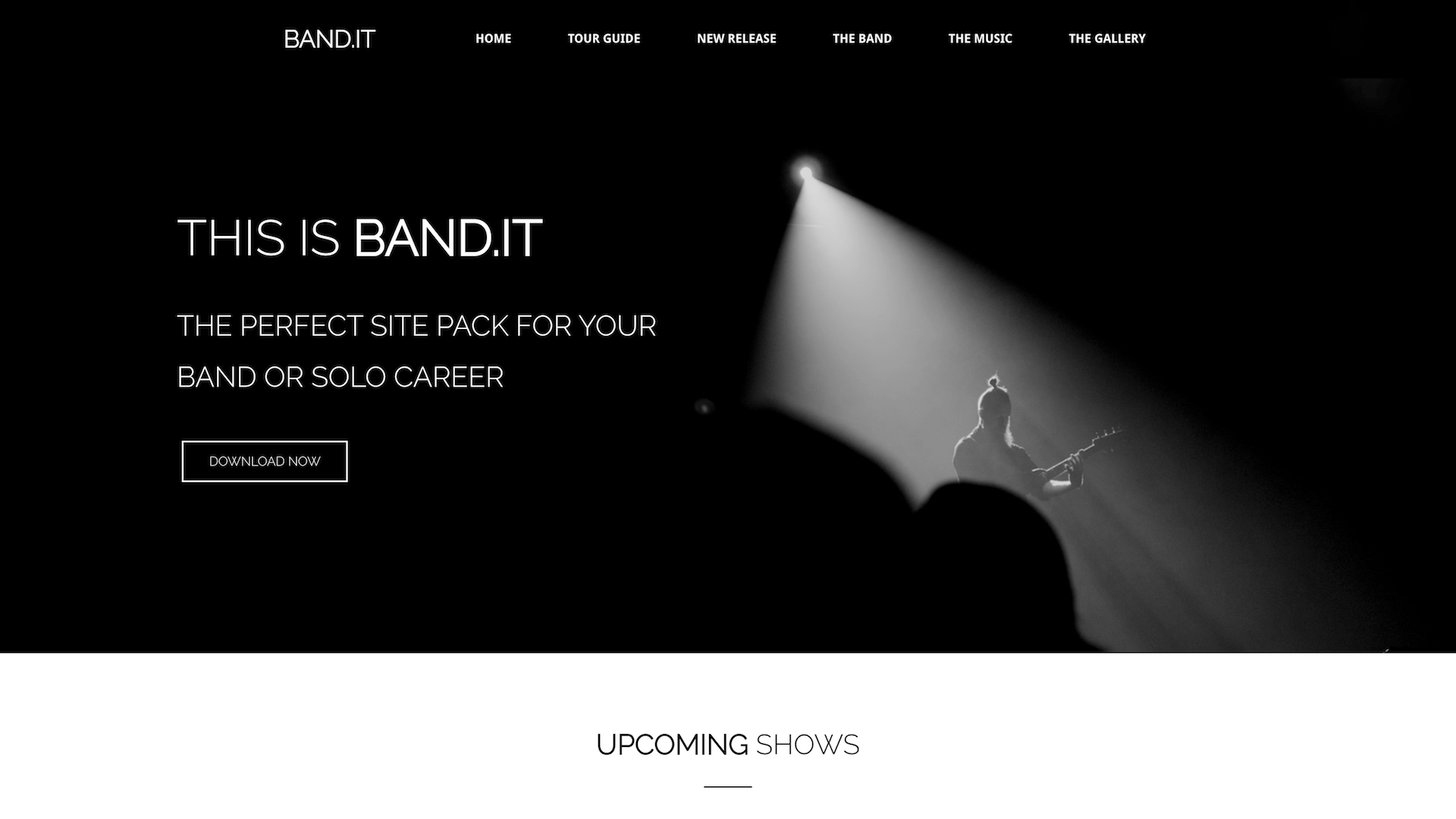 Free Prebuilt WordPress Website Template for Musicians and
